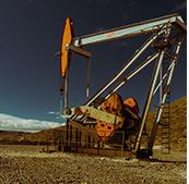 Imagen de una cig&uulm;eña de petróleo